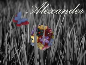 Коллекция бижутерии серии Alexsander